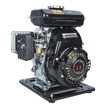 Motobomba bencinera SDS Power SGP10L 1